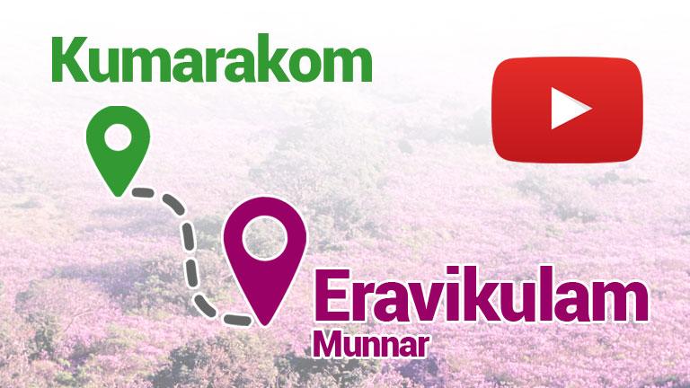 How to Reach Eravikulam from Kumarakom?