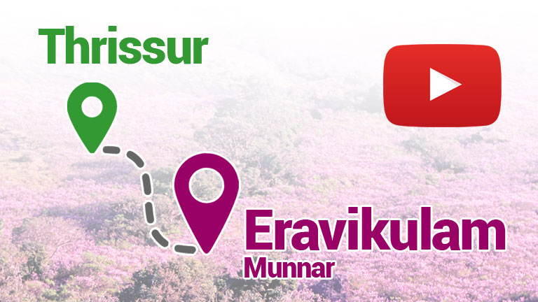How to Reach Eravikulam from Thrissur?