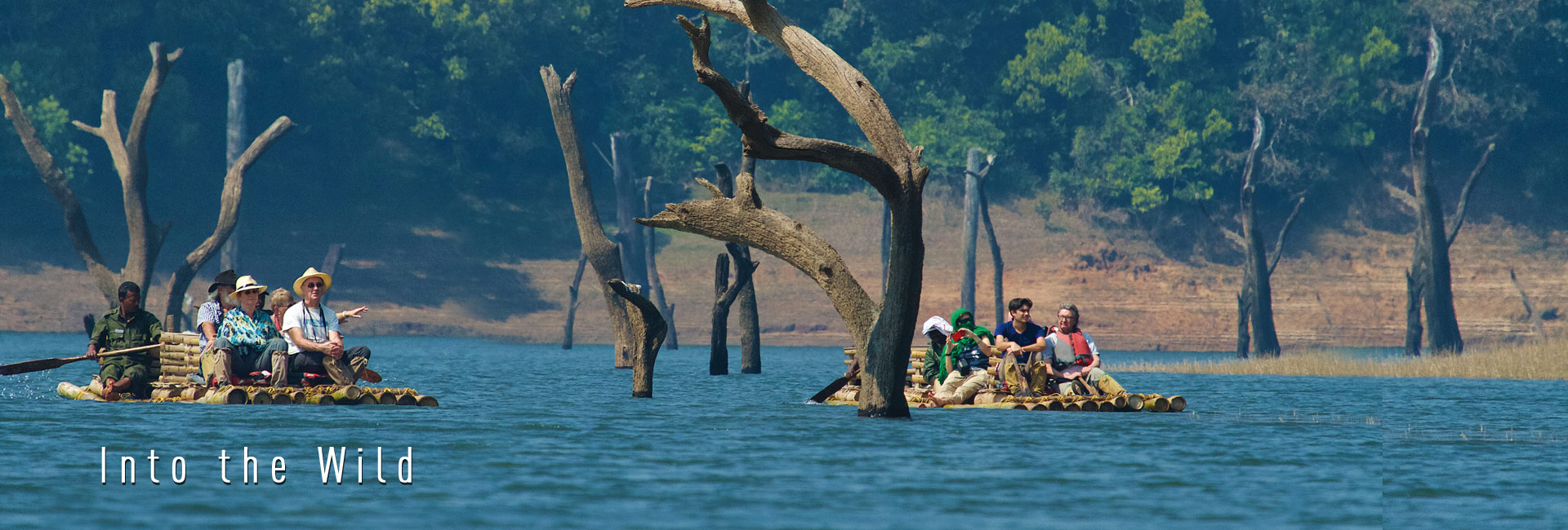 In to the Wild - Periyar Tiger Reserve