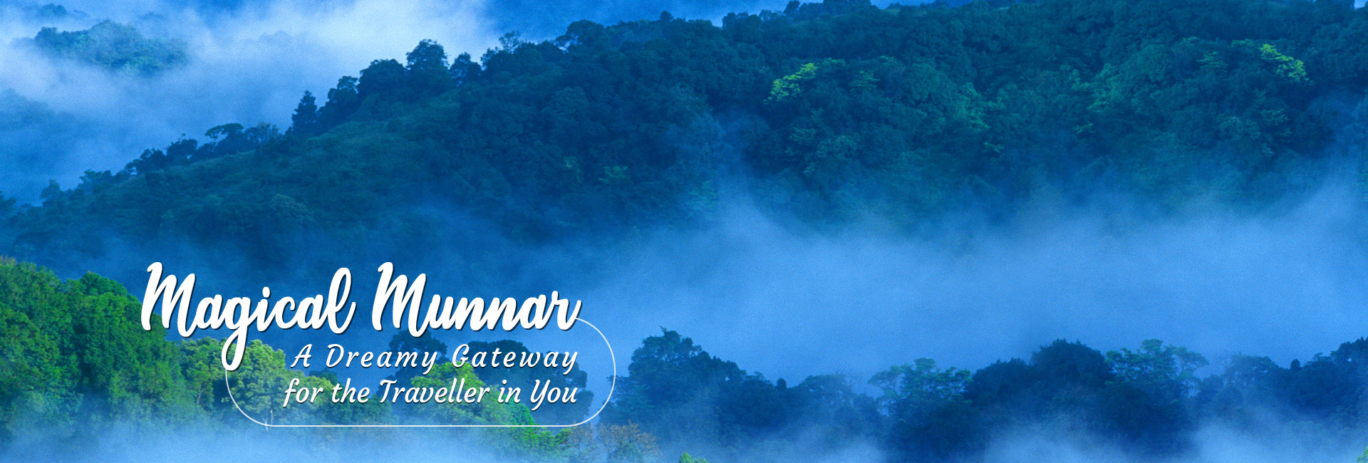 Magical Munnar, A Dreamy Gateway for the Traveller in You