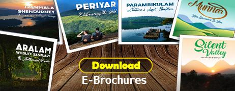 E Brochures