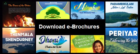 Download E-brochures