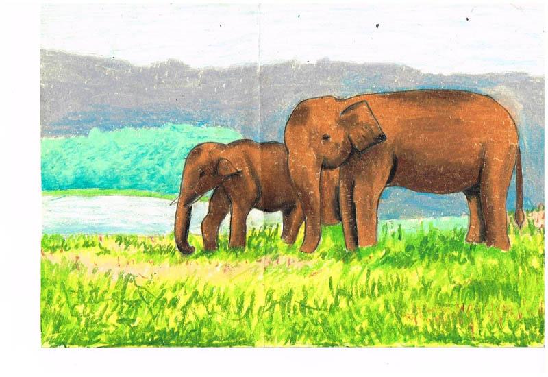 Painting by NABIHA  TAHSIN  RIFA