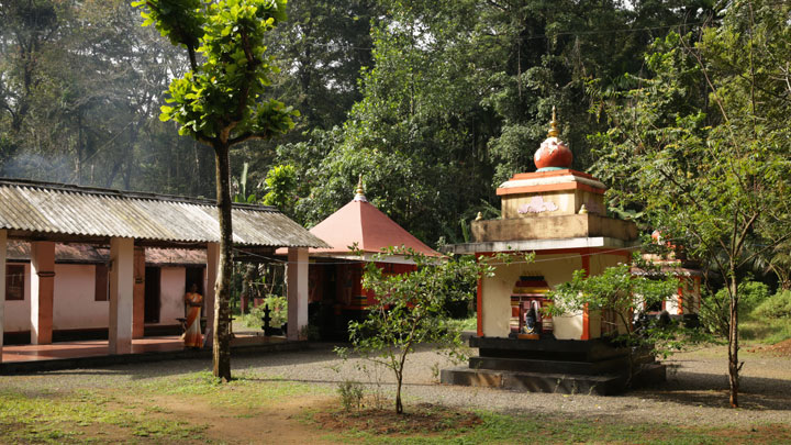 Alapra Thacharikkal Bhagavathi Temple
