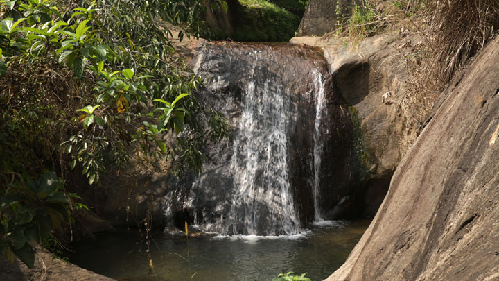 Aruvikuzhy Waterfalls