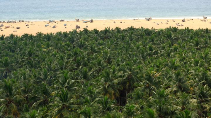 Chowara & Azhimalathara Beach