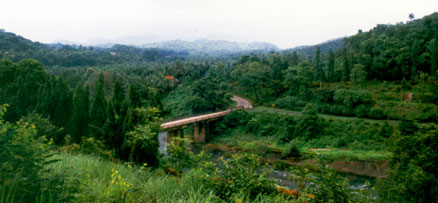 Green destination in Kozhikode, Janakikad Ecotourism