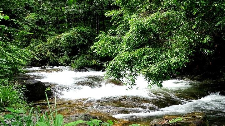 Ezharakundu Waterfalls