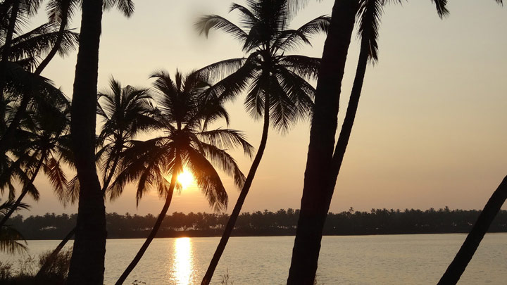 Kavvayi Backwaters - Malabar's own backwaters in Payyannur, Kannur