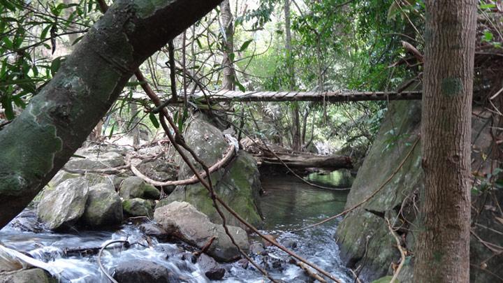 Meenvallam Waterfalls in Palakkad