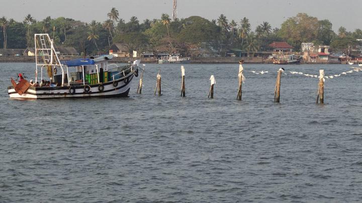 Munambam Beach at Kochi, Ernakulam