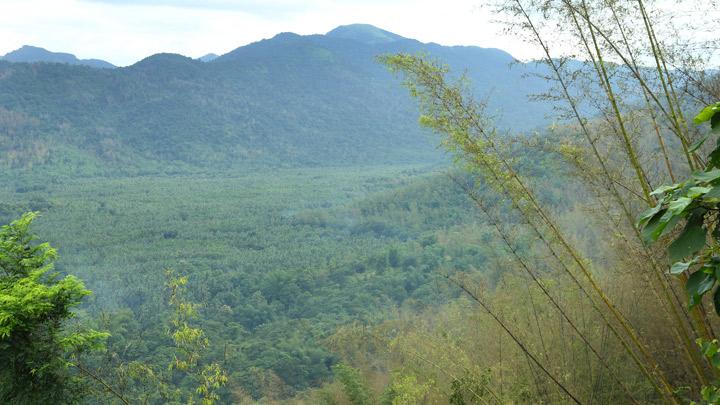 Nadukani Hills in Kottayam
