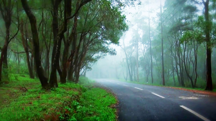 Ponmudi Hill Station, Thiruvananthapuram