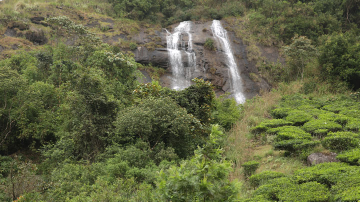 Power House Waterfalls, Munnar