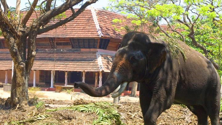 Punnathoor Kotta, Thrissur
