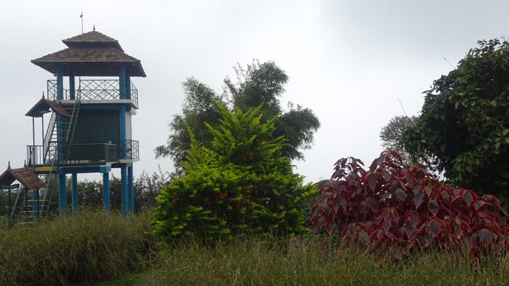 Watch Tower at Chellarkovil