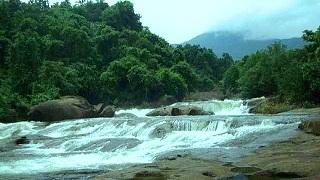 அரிப்பாரா நீர்வீழ்ச்சி, கோழிக்கோடு