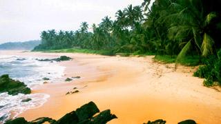 కిహున్నా బీచ్, కన్నూరు