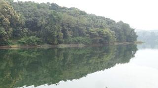 Mangalam Dam, Palakkad