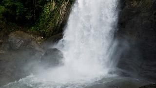 Sentinel Rock Waterfalls in Wayanad