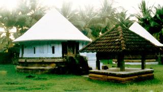 Thrithala, Palakkad