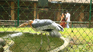 Zoo in Thrissur
