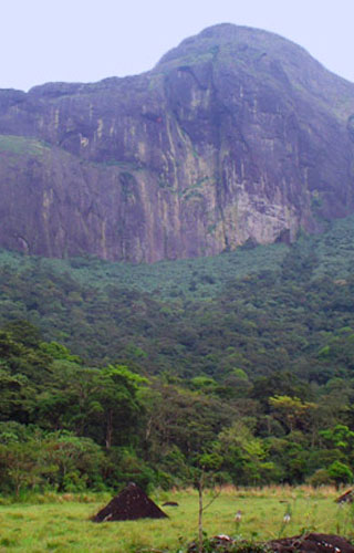 Hill Stations situated in the Western Ghats of Kerala