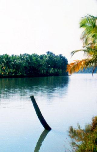 চিতরি- একটি ছোট্ট গ্রীস্মমন্ডলীয় দ্বীপ।
