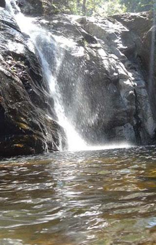 Mankayam Ecotourism