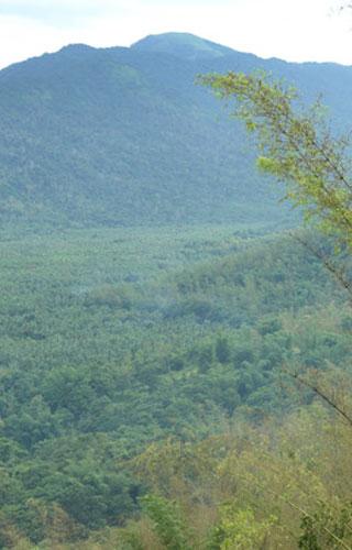 Nadukani Hills, Kottayam