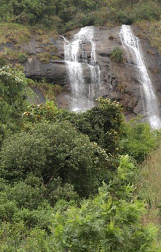Power House Waterfalls, Munnar