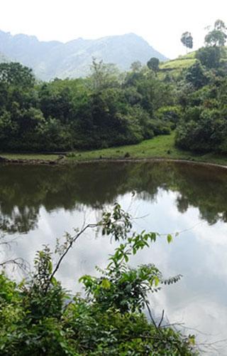 Vazhikkadavu in Kottayam