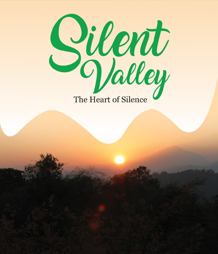 Silent Valley - The Heart of Silence