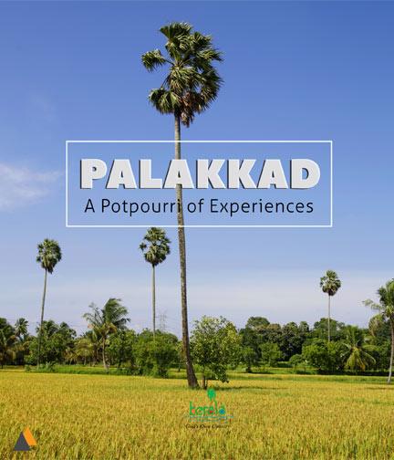 Palakkad, A Potpourri of Experiences