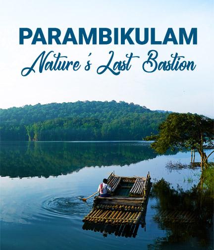 Parambikulam, Nature's Last Bastion
