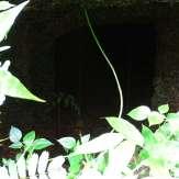 An underground tunnel