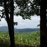 Kannavam forest view from Kottai hills