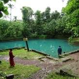 Thodikkulam Temple Pond