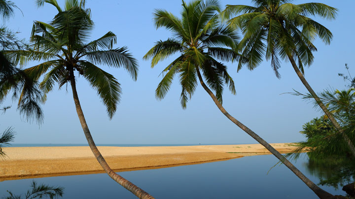 Image of the Month - Kasaragod Beach