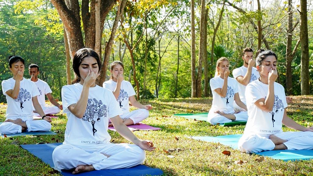 Meditation in Yoga