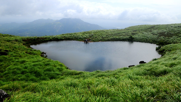 Wayanad - A Tryst with Nature