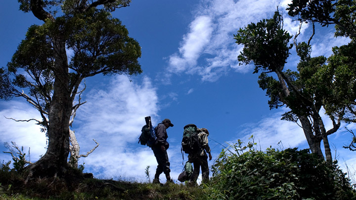 Get ready to  explore the jungles of Central Kerala - Mankulam Aanakkulam and Sholayar