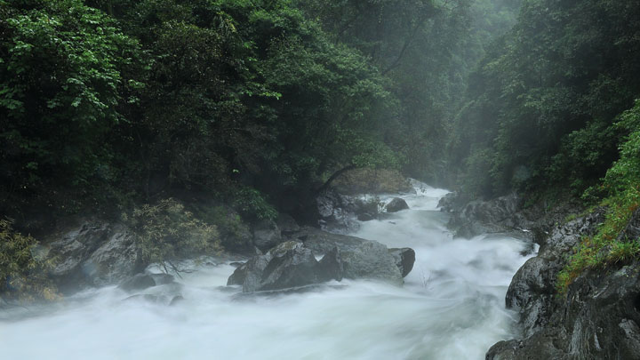 Meenmutty Waterfalls at Aralam Wildlife Sanctuary in Kannur