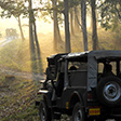An Exhilarating Jeep Safari