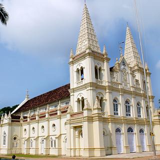 Santa Cruz Basilica Feast