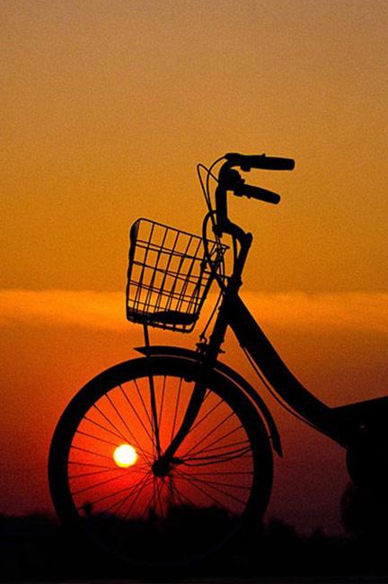 Cycling tour Kochi