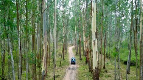 Muthanga Wildlife Sanctuary