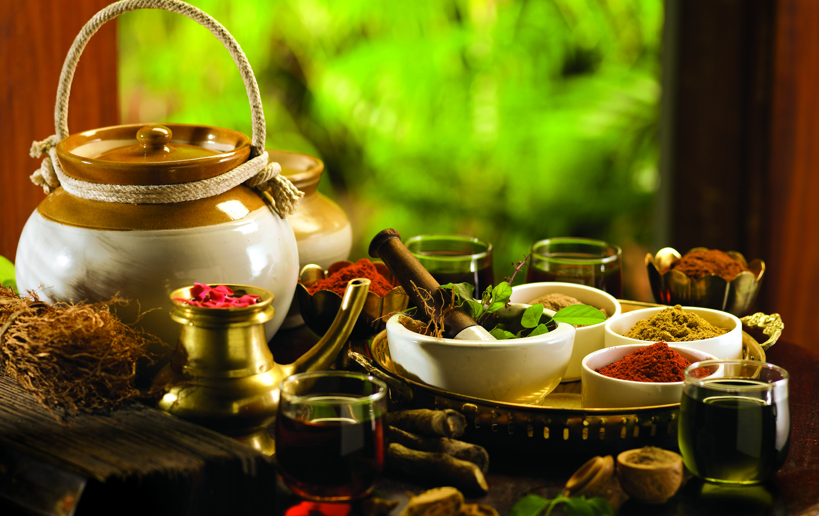 ayurveda top indian holidaya