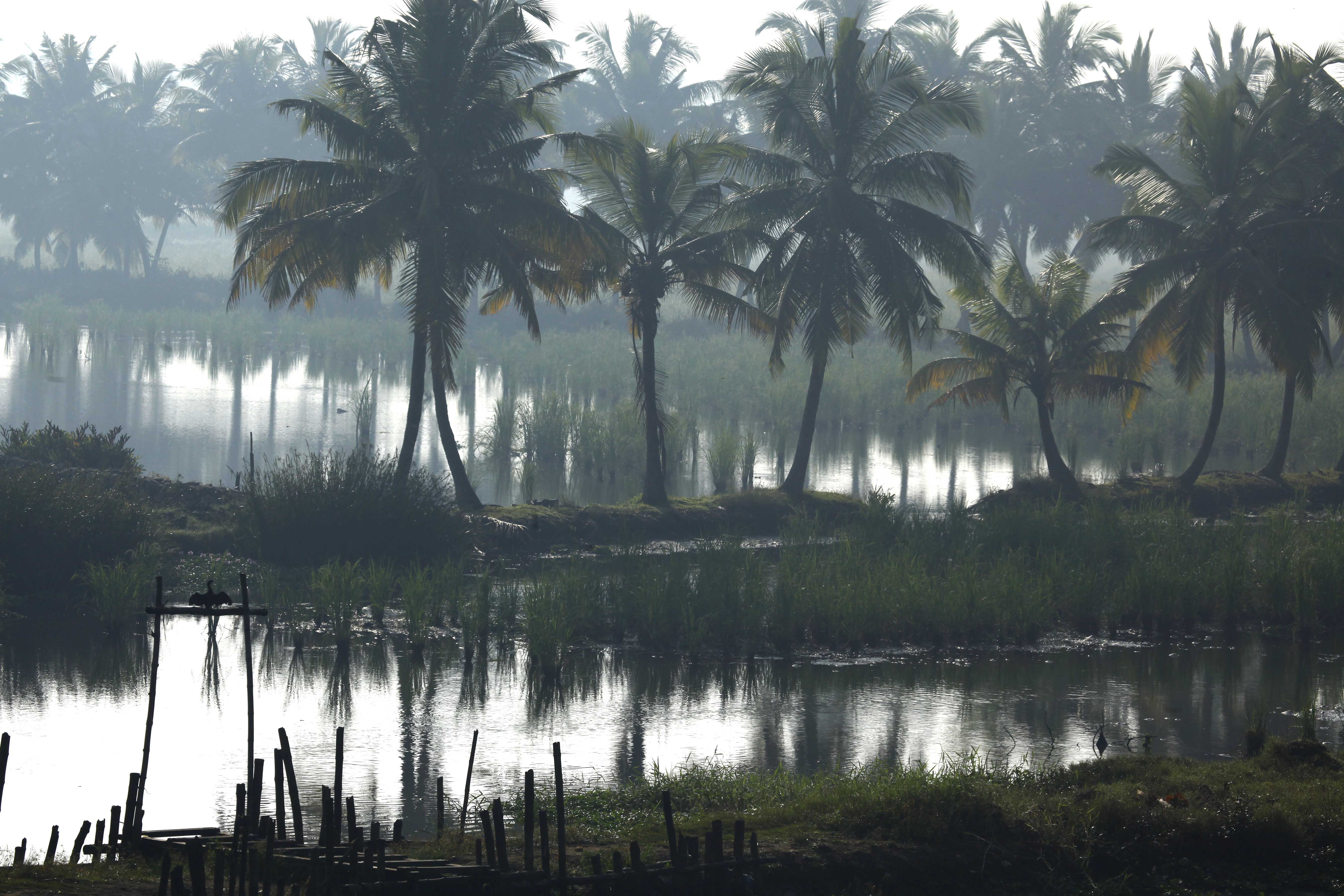 kerala tourism This is the official website of kerala tourism, government of kerala, india in youtube, which is the home page of wwwkeralatourismorg wwwkeralatourismor.