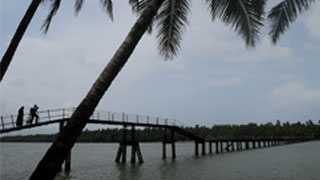 A bridge over the Backwaters of Valiyaparamba
